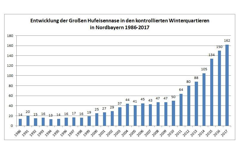 Tagebuch der Großen Hufeisennase in Bayern - LBV