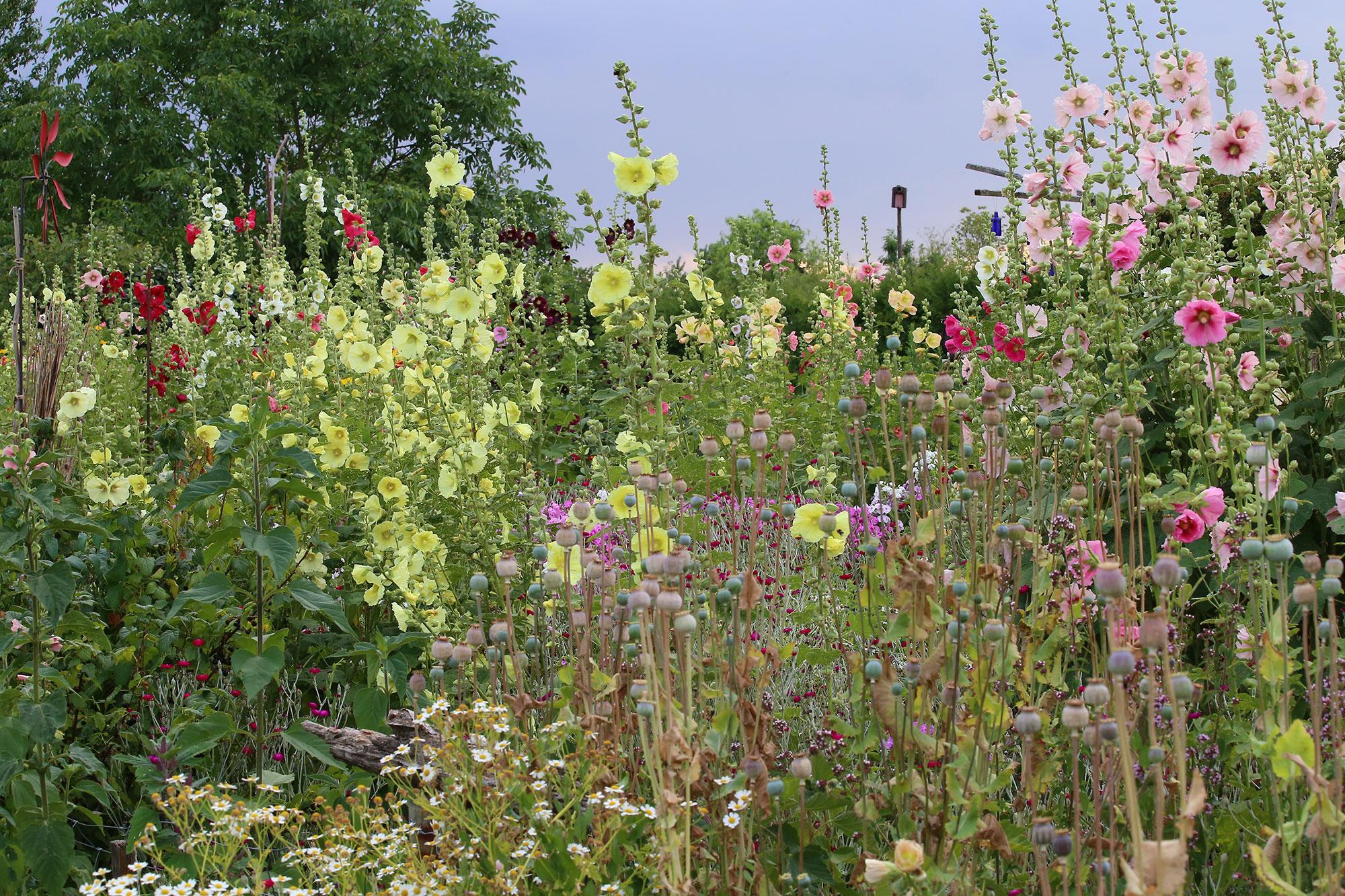 Gartengestaltung Sichtschutz Stein Modell Rockydurham Lowpowerpcsinfo Array