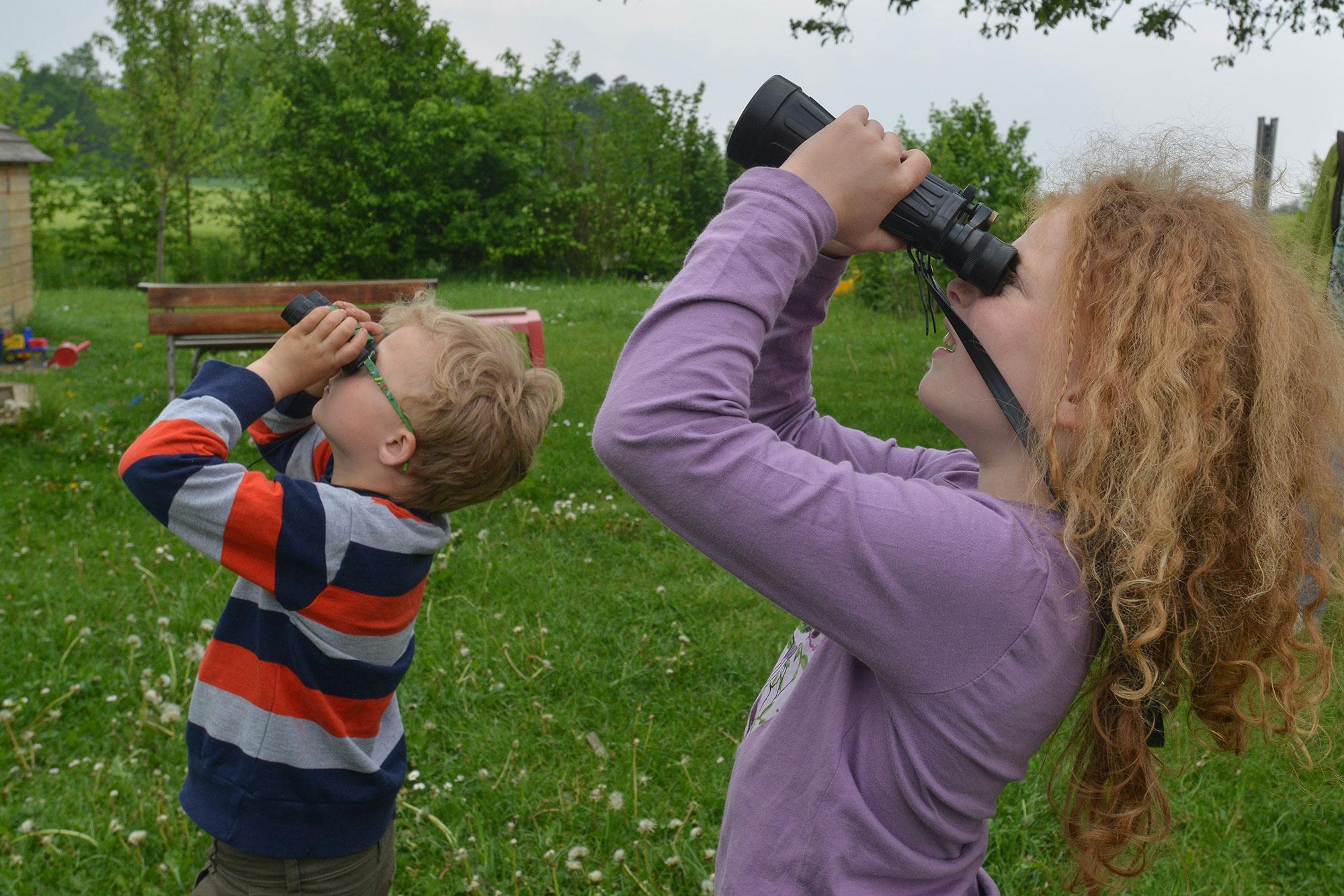 Ferngläser zur vogelbeobachtung vergleich testberichte