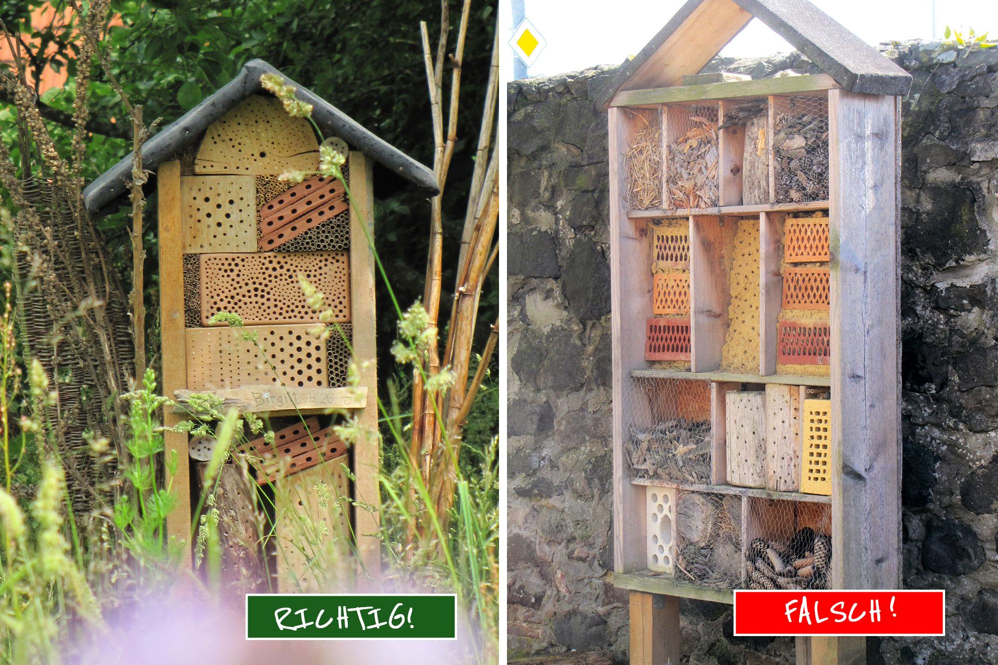 insektenhotel selbst bauen: tipps und tricks - lbv