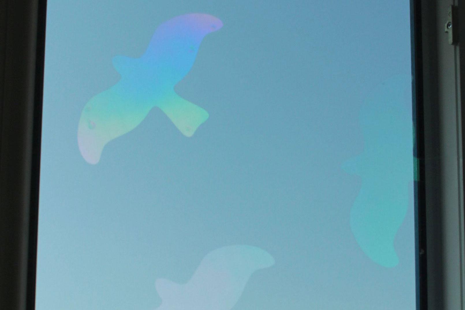Helfen Uv Markierungen Gegen Vogelschlag Lbv